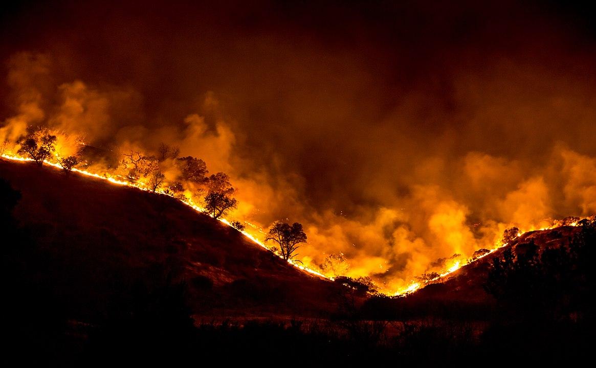 1165px-Woolsey_Fire_-_tree_ridge_in_flames_20181119-PB-008